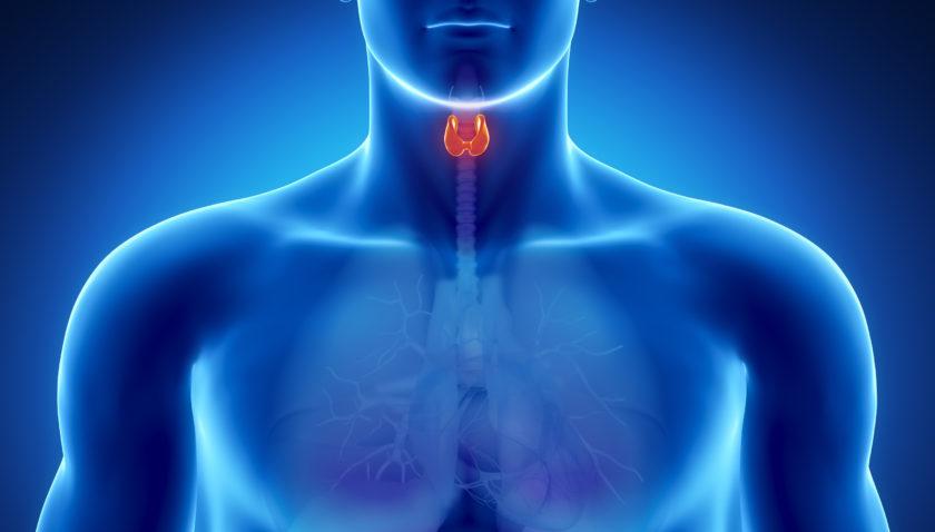 Симптомы рака щитовидной железы — причины, виды, стадии