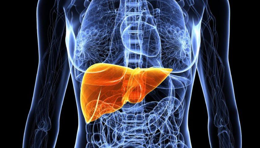 Симптомы рака печени — формы, стадии, причины